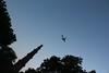 14691391_1117379394965908_5293523068824195090_o (Ar Milon) Tags: india qutb minar qutbminar newdelhi delhi newphotographer