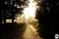 Sunrise at Dore l'Église (Frankhuizen Photography) Tags: sunrise dore léglise france 2017 zondopgang auvergne frankrijk landscape landschap sunlight zonlicht travel reizen trees bomen road weg