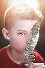 (Rebecca812) Tags: boy child fern lensflare portrait fineart beautiful tween blueeyes canon rebecca812