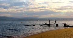 Pescador (alfonsocarlospalencia) Tags: pescador perro siluetas boya playa magdalena cantabria santander muro nubes montañas orilla horizonte amarillo atardecer crepúsculo luz arena reflejos barco paz belleza