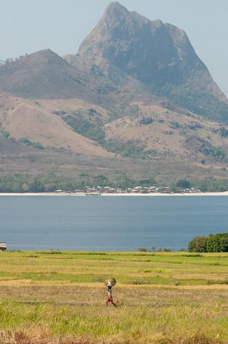 East Nusa Tenggara