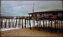 Cape Hatteras On a Rainy Day (Chris C. Crowley- Always behind but trying to catc) Tags: capehatterasonarainyday capehatterasnorthcarolina beach waves ocean atlanticocean sea pier pilings clouds sky stormy man david scenic landscape seascape