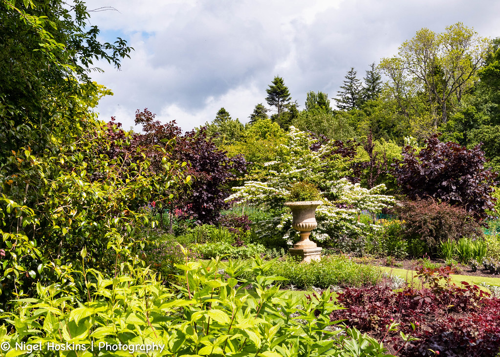 The world 39 s most recently posted photos of for Garden trees scotland