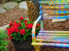 BRIGHTLY COLORED BENCH IN DISCOVERY GARDEN (Visual Images1) Tags: hbm bench benchmonday colorful flowers discoverygarden binghamton newyork