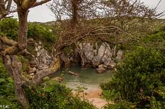 Playa de Gulpiyuri-0030 (loarca989) Tags: playa asturias cantabrico mar