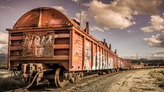 Gotta Get On This Train (emiliopasqualephotography) Tags: cimaca california mojavenationalpreserve desert train tracks railroad