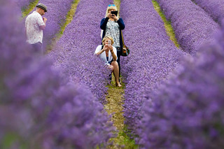 Friends in a field of lavender