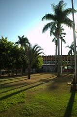 Jataí, Goiás, Brasil (Proflázaro) Tags: brasil goiás jataí natureza ecologia cidade jardim cerrado praça praçadabandeira árvore palmeira céu