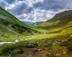 The green Valley (maka3110) Tags: nikkor 35mm d7100 nikon bach wasser grass gipfel gross pfunds platzertal alpen berge österreich tirol alps beautiful big yellow green valley