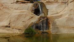 واحة (egotoagrimi) Tags: ikaria wildswimming wildcamping may aegean greece ικαρία oasis kalou swimminghole nudebathing wildherbs hiking wildmint