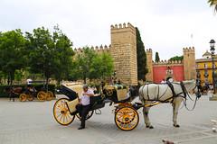 2017 SPM0225 Seville, Spain (teckman) Tags: 2017 europe sevilla seville spain andalucía es