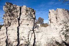 Bullen Range walk-15 (wogadugu) Tags: bbc paddysriver australiancapitalterritory australia au