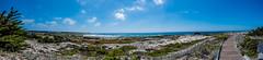 Beach Boardwalk Panorama (randyherring) Tags: ca california beach historic boardwalk asilomarconferencegrounds park recreational outdoor panorama nature pacificocean pacificgrove unitedstates us
