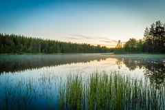_09A6378-HDR (10SecondFuze) Tags: lake sky sunrise reeds trees mist morning reflection
