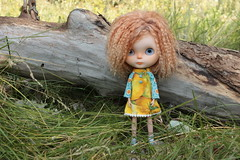 IMG_7313 (helenaaahaha) Tags: blythe blythedoll blytheinrussia bigeyes blythedollcustom customblythe custom customizedbyhelenaaa cutethings gingerhair fbl freckles weekend sweety summer