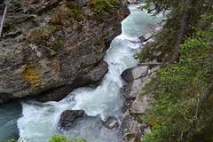Johnston Canyon (The Digital Collector) Tags: johnstoncanyon banffnationalpark