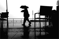 000239 (la_imagen) Tags: sw bw blackandwhite siyahbeyaz monochrome street streetandsituation sokak streetlife streetphotography strasenfotografieistkeinverbrechen menschen people insan rain yağmur regen bodensee laimagen lakeconstanze lagodiconstanza lagodeconstanza friedrichshafen