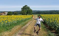 happiness (the ripped bystander) Tags: été champ tournesols gaieté légèreté saut chemin