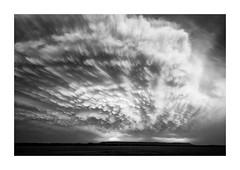 Mammatus (Sandra Herber) Tags: stormchasing texas lightning