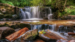 The beautiful South... (Einir Wyn Leigh) Tags: landscape river waterfall water nature beauty nationalpark breconbeacons southwales cymru natural foliage summer july 2017 happiness friends joy outdoors walking