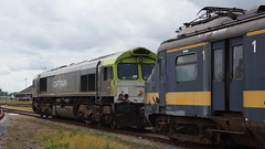220 902 2017.07.14 Roosendaal (146) repatriëring 220 902 (Rob NS) Tags: captrain 2000825411 6603 class66 benelux mat57 220902 roosendaal