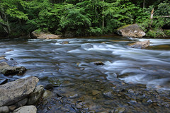 Cranberry River (ashockenberry) Tags: west virginia stream river cranberry flow rapids