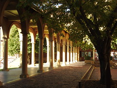 University of Adelaide (Lesley A Butler) Tags: universityofadelaide sa autumn australia adelaide