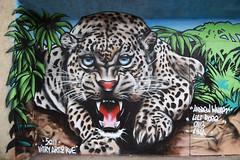 Andrew Wallas (HBA_JIJO) Tags: streetart urban graffiti vitry vitrysurseine animal art france hbajijo wall mur painting aerosol peinture paris94 spray mural bombing urbain félin andrewwallas fauve