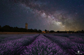 Enjoying seeing the milky way and smelling lavender at Albacete (Albacete, Spain)
