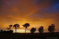 Dramatic Sunset (Johan Konz) Tags: summer dramatic sunset orange sky rain clouds rural trees outdoor landscape atmosphere nikon d90 purmerland waterland netherlands tree silhouette