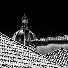 La major (omj11) Tags: marseille noiretblanc toits carré eglise