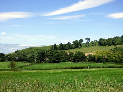 GOC Ashridge & Ivinghoe 006: View