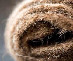 """#MacroMondays  #""""Member's Choice: Texture"""" (BSchwend1) Tags: macromondays memberschoicetexture wool felt roll"""