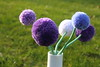 Pompom flowers (II) (dididumm) Tags: pompom wool upcycling crafting handarbeit wolle bommel pompon