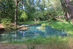 parco lavino (Maria Teresa D) Tags: fiume acqua lavino blu azzurro verde natura riservanaturale panorama paesaggi