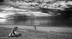 Passed Us By (maureen.elliott) Tags: blackandwhite landscape clouds water lakesuperior lakesuperiorprovincialpark beach shoreline camping ontario storm threatening weather