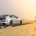 "2017_ford_mustang_california_special_review_dubai_carbonoctane_9 • <a style=""font-size:0.8em;"" href=""https://www.flickr.com/photos/78941564@N03/35868391680/"" target=""_blank"">View on Flickr</a>"