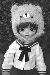 (Lord_Fuuu) Tags: napi napidoll doll maron volks yosd body head tiny