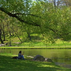 From Instagram July 19, 2017 at 12:49AM (Blister Pop) Tags: ifttt instagram photography park manhattan nyc centralpark leaves harlemmeer spring trees relaxing share water dslr sony alpha konica minolta amateurphotography