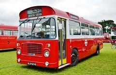 London Transport Bristol LH BL49 (stavioni) Tags: lt london transport single decker step bus red bristol lh ecw ulo524r ojd49r bl49
