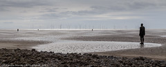 Crosby Another Place (lyndakmorris) Tags: â© lynda morris lrps 2017 crosby anotherplace gormley