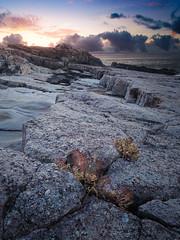 龍洞岬Longdong headland (Y.P. Jhou) Tags: rocks taiwan landscape dawn morning sunrise seashore ground travel 台灣 風景 旅遊 龍洞 東北角 日出
