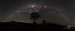 Galactic Highway (Bobby Krstanoski - Photography) Tags: australia canon canon5dmarkiii canonef1635f28 clearsky landscape longeposure milkyway nsw outdoor panoramic places tree winter