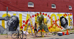 PK5_4671 (Philip Osborne Photography) Tags: noda charlotte wall art brick beer north davidson spraypaint cans