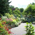 Save Your Budget With These 4 Landscape Planting Strategies (4 photos) thumbnail
