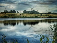Can't hide them (andystones64) Tags: lincolnshire nlincs scunthorpe reeds bushes trees technology wind turbines water pond countryside wildlife reserve nature bluelagoon