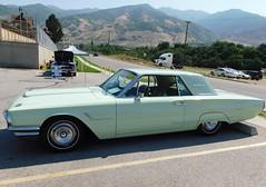 1965 Tbird green=1 (THE HALENIZER) Tags: 1965 tbird