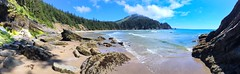 Oswald West State Park - iPhone pano (Jim Nix / Nomadic Pursuits) Tags: iphone macphun luminar oswaldweststatepark oregon archcape beach coastline coast coastal pacificnorthwest pacnw nxnw summer afternoon jimnix nomadicpursuits