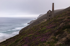 Poldark Country (MarkWaidson) Tags: tin mine whealcoates towanroath shaft derelict nationaltrust cornwall heather