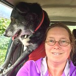 Backseat driver thumbnail